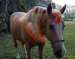 Halloween Costumes Horses Sale Costumes U0026 Gifts Horses Mybuddybling Etsy