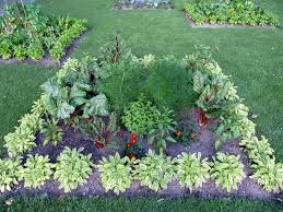 garden ideas kitchen garden plants vegetable plants patio