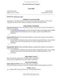Computer Skills Qualifications Resume Functional Style Resume Resume For Your Job Application