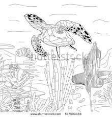 stylized turtle stock images royalty free images u0026 vectors
