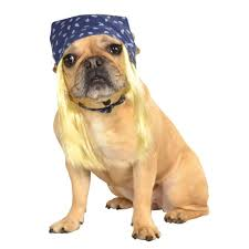 Halloween Costume Ideas Dogs 11 Dogtober Celebrity Dog Costumes Images