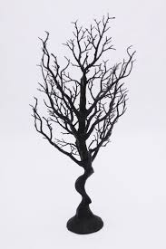 25 best manzanita tree ideas on pinterest manzanita tree