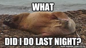 Walrus Meme - meme