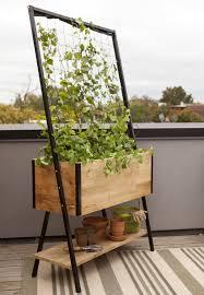grow a bigger garden in a smaller space growing among friends