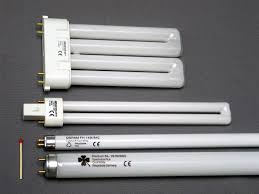 8 fluorescent light bulbs fluorescent lights splendid 8 fluorescent light bulbs 33 8 foot