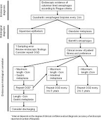 100 pdf barrett esophagus british society of