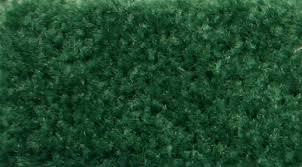 sdc convention services custom carpet colors
