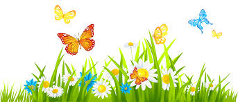 flower with butterfly clipart clipartxtras