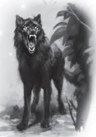 image shadow wolf jpg white wolf fandom powered by wikia
