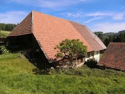 haslach im kinzigtal alter schwarzwaldhof mit 160 000qm