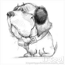 14 best sketches images on pinterest cool art funny pets and