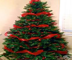 100 professionally decorated christmas trees 10 best o