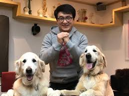 put me like 盞 jackie chan and his dogs jj and jones