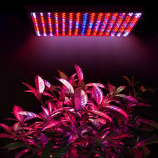 amazon com yescom indoor 225 led grow light panel hydroponics