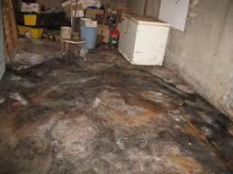 plumbing backup in basement homeowner faq sewer line backup
