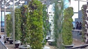 o u0027hare creates urban garden nbc chicago