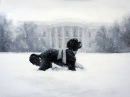 the 2012 white house holiday card whitehouse gov