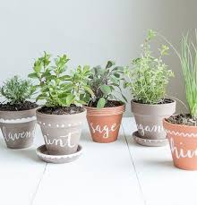 Small Herb Garden Ideas 10 Tiny Herb Garden Ideas That Will Fit In Any Apartment Herbs