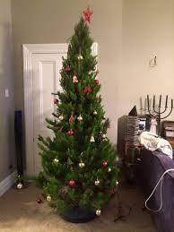 mount gabriel christmas trees home facebook