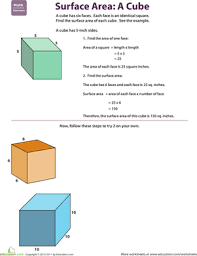 find the surface area cube worksheet education com