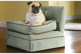 posh pet chair to go with your posh furniture luxurylaunches