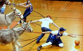 the dark side of donkey basketball modern farmer