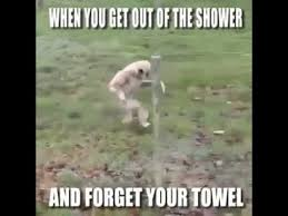 Towel Meme - when you get out the shower and forget your towel youtube