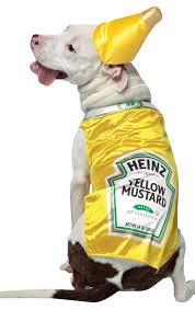 Halloween Costumes Dogs 41 Halloween Costumes Dogs Images Pet