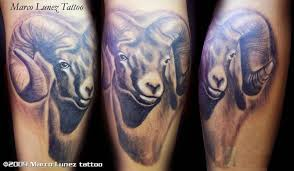 aries goat head tattoo on leg photos pictures and sketches