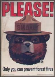 Only You Can Prevent Forest Fires Meme - 317 best smokey bear images on pinterest childhood memories bear