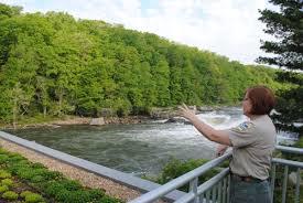 pennsylvania native plants list partnership u0027s plant sale funds fight for eastern hemlock new
