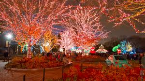 10 best things to do in chicago december 2016 nearest