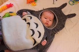 Totoro Halloween Costume Maile U0027s Halloween 1 U2013 Costume U2014 Hapa Haole