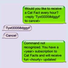 Cat Facts Meme - cat facts text trolling know your meme