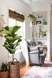 living room decor plants interior design