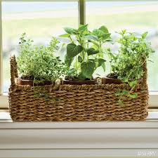 Window Sill Herb Garden Designs Windowsill Herb Planter Three Terracotta Pots Nest Within A Wire
