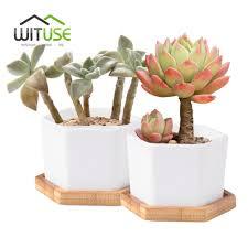 compare prices on planter trays online shopping buy low price wituse 2pcs succulent plants flowerpot hexagonal ceramic white glazed desktop decorative bonsai planter garden pot