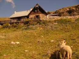 chambre d hotes orcieres superbe chalet d alpage à orcières merlette à orcières