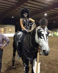 Horse Halloween Costumes Sale Hilarious Horse Halloween Costumes Craziest