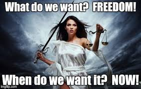 Freedom Meme - what do we want freedom a little meme love in action now