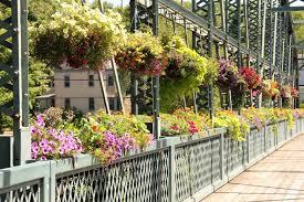 unique flower planters ideas youtube