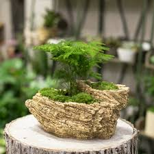 tree stump planters resin artificial twisted driftwood flower pot sculpture succulent