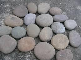 large garden pebbles big round river rocks stones garden rocks
