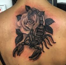 What Do Scorpion Tattoos Related Image Scorpion Tats 4a King Or