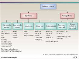 new strategies in the treatment of ovarian cancer current