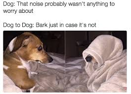 Dog Barking Meme - these memes will make any dog owner feel more related than ever