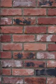 Fake Exposed Brick Wall 76 Best Exposed Brick Walls Images On Pinterest Exposed Brick