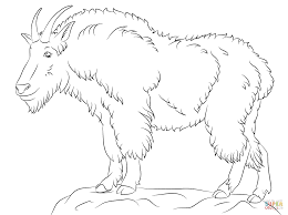 mountain goat coloring page free printable coloring pages