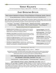 It Executive Resume Examples by Coo Sample Resume Executive Resume Writer For Technology