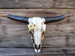 Longhorn Decorating Ideas Chic Longhorn Cow Skull Wall Decor Zoom Design Ideas Cow Skull